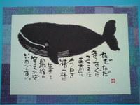 Kujira Hagaki.jpg