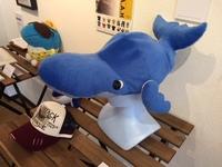 クジラ帽子.JPG