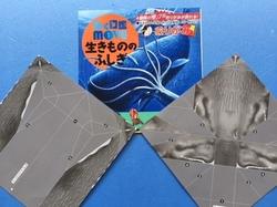 生き物折り紙マッコウ.jpg