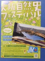 自然史フェスパンフレット.JPG