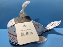 鯨花火(札付き).JPG
